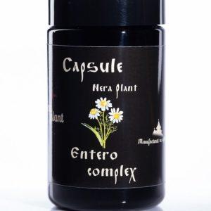 capsule entero complex