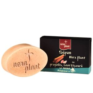 Săpun solid cu propolis scorţişoară cacao