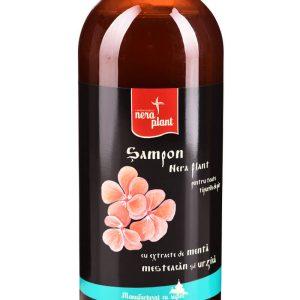 Şampon pentru toate tipurile de păr