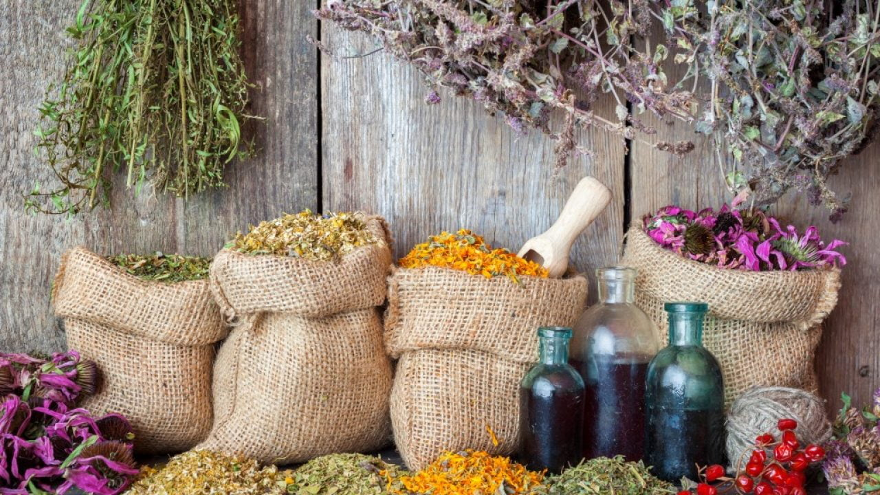 Plante medicinale mănăstirești