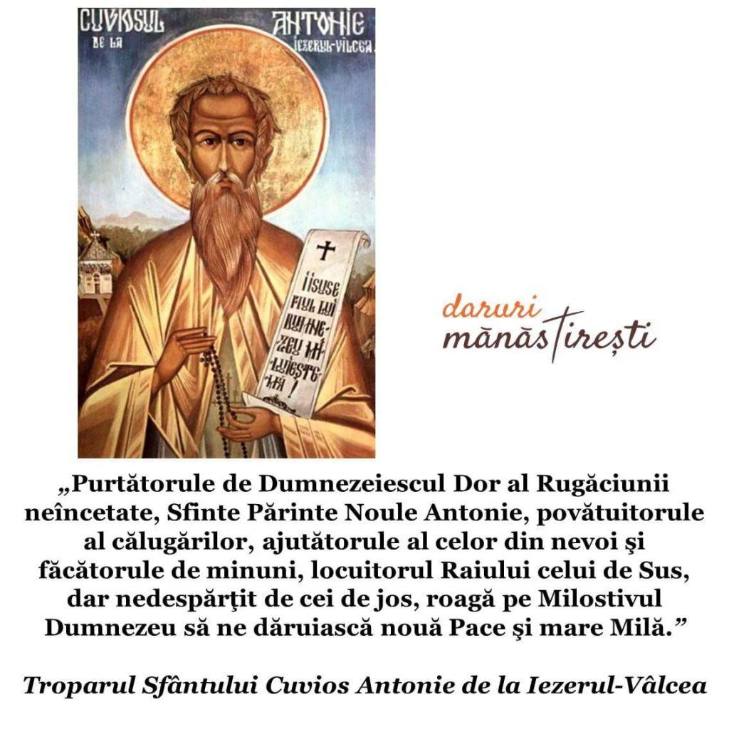 Viața Sfântului Antonie de la Vâlcea