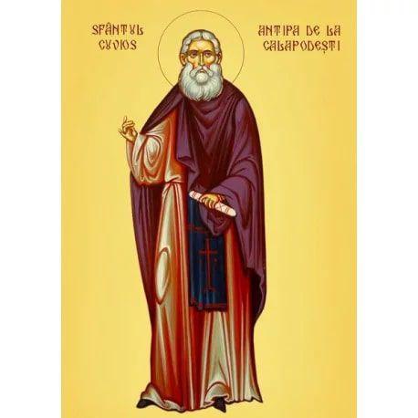 Viaţa Sfântului Cuvios Antipa din Calapodești